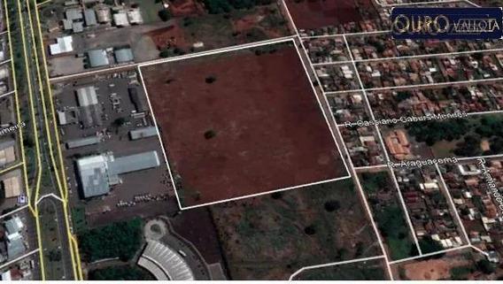 Terreno Plano Em Ms - Te 190909v - Te0156