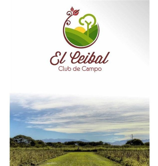 Re/max Noa Ii Vende Terreno En El Ceibal