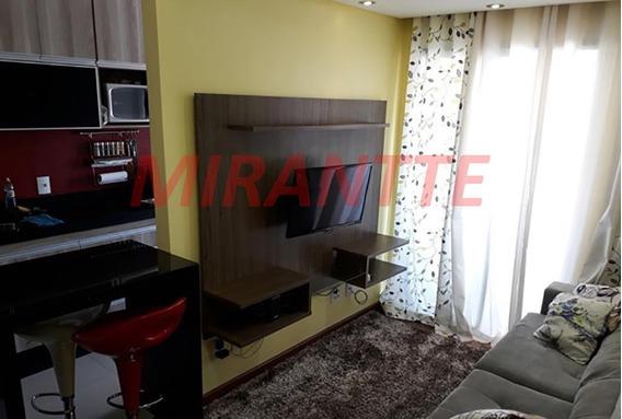Apartamento Em Vila Amelia - São Paulo, Sp - 295894