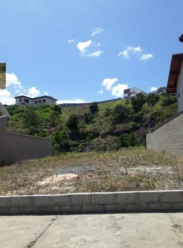 Imagem 1 de 1 de Terreno - Te00033 - 69533895
