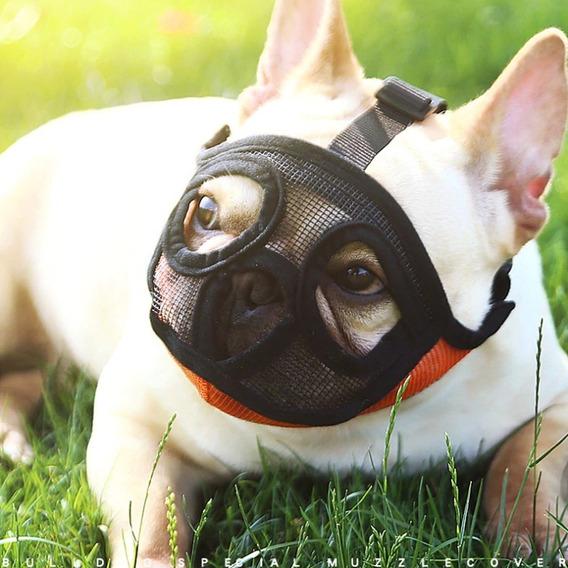 Focinheira Buldogue Regulável Respirável Pug Bulldog