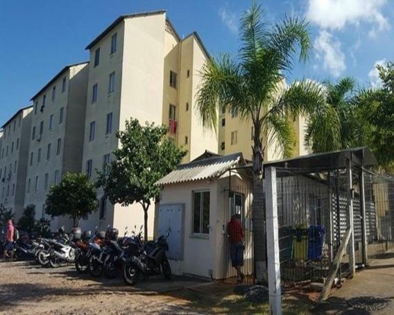 Apartamento - Ap1195 - 32350694
