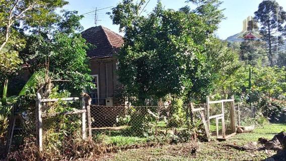 Área Agrícola Em Cerro Branco Rs Fazenda - Fa0010