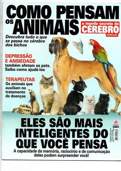 Revista O Mundo Secreto Do Cérebro: Como Pensam Os Animais