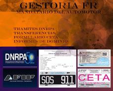 Ceta Sin Clave - Formularios/08/12/gestoria/informes/seguros