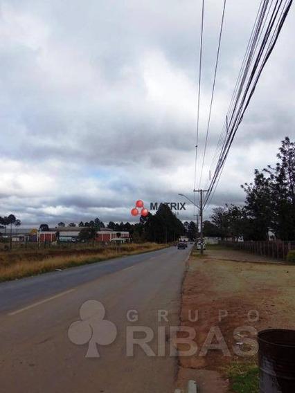 Terreno Residencial À Venda, Novo Mundo, Curitiba - Te0839. - Te0839