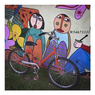 Bicicleta Aurorita Plegable Rod. 24