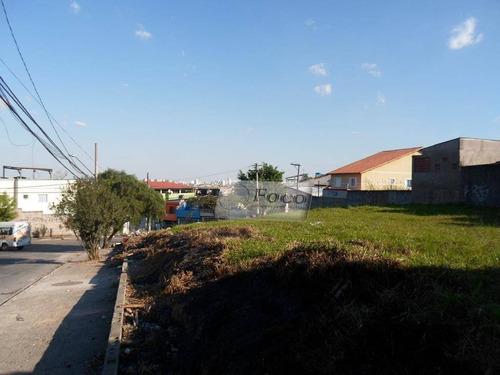 Imagem 1 de 5 de Terreno Residencial À Venda, Vila São João Batista, Guarulhos - Te0043. - Te0043