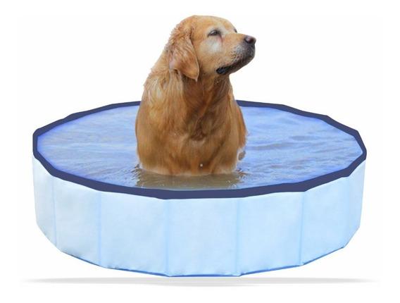 Piscina Para Pet Cachorro Grande Resistente