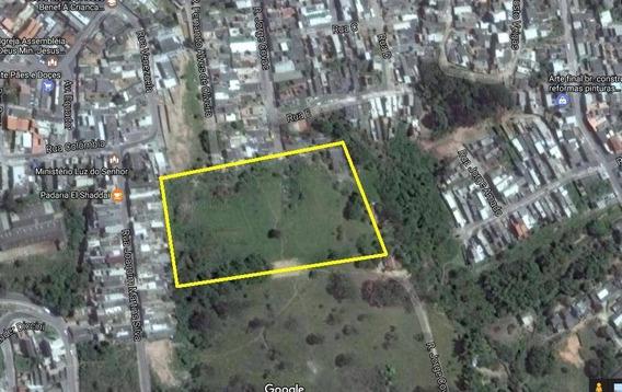Terreno À Venda, 6.300 M² Ou 12.600 M², Jardim Maria Cecília, Ferraz De Vasconcelos. - Te0001