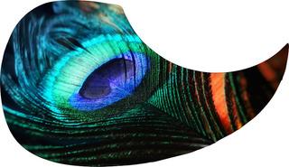 Escudo Palheteira Resinada Violão Peacock Feather