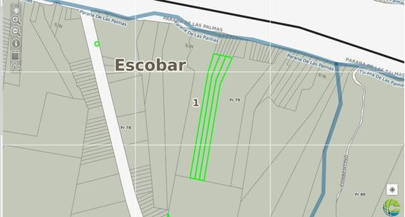 Fracción 2 Hectáreas En El Paraná De Las Palmas