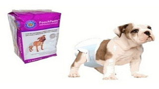 Pañal Para Mascotas X Small De 2-4kg X12u Perros Cachorros