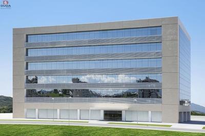 Sala Salão Comercial No Bairro Cidade Universitária Pedra Branca Em Palhoça Sc - 2228184