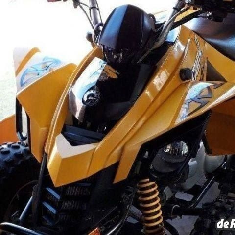 Can Am 250cc Ds