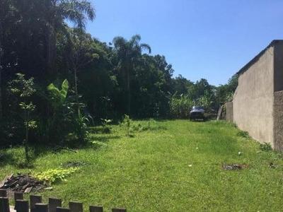 Terreno Lado Praia Com 456 M² Em Itanhaém - 5107/p