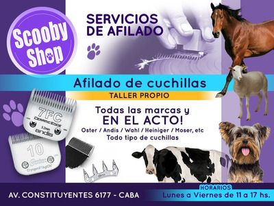 Afilado De Cuchillas Caninas Todas Las Marcas