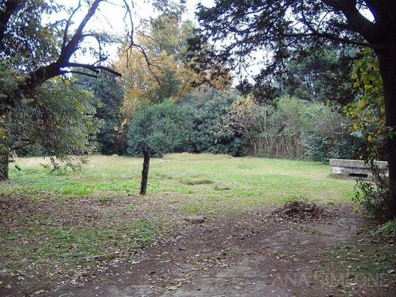 Quinta - Parque San Martin