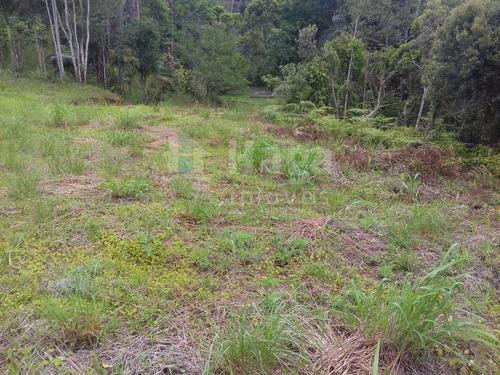 Imagem 1 de 9 de Terreno Rural Para Sítio Ou Chácara A Venda Em Botuverá/sc - 1699c