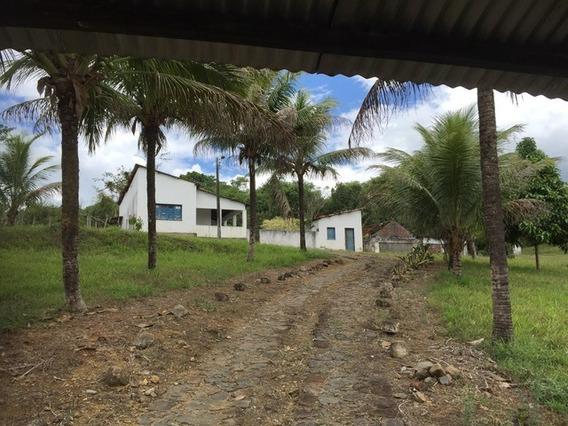 Fazenda De Cacau E Loteamento Para Casas