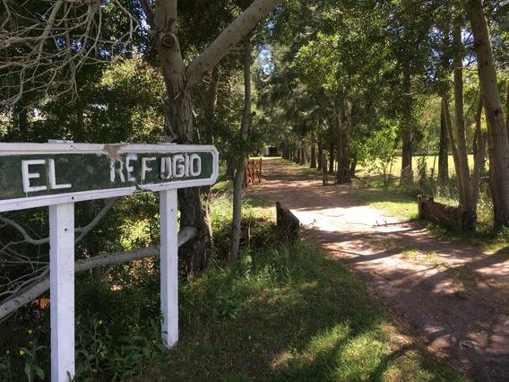 Campo En Venta En Magdalena   Ruta 11 Km 42 (24 Hect)