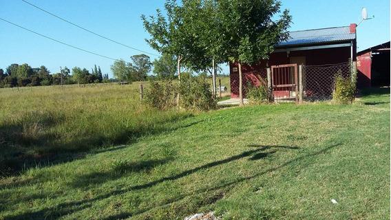 Campo En Venta En Punta Indio 2,8 Hectáreas