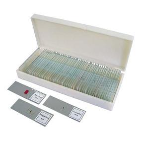 Conjunto 50 Lâminas Preparadas De Microscopia - Fanerógama
