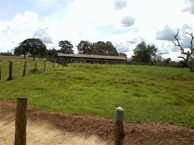 Fazenda Em Araguacema- To, P/ Agricultura - 416