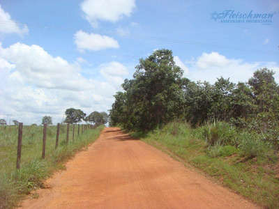 Fazenda Rural À Venda, Agrovila Nova Santa Rosa, Uruçuí - Fa0007. - Fa0007