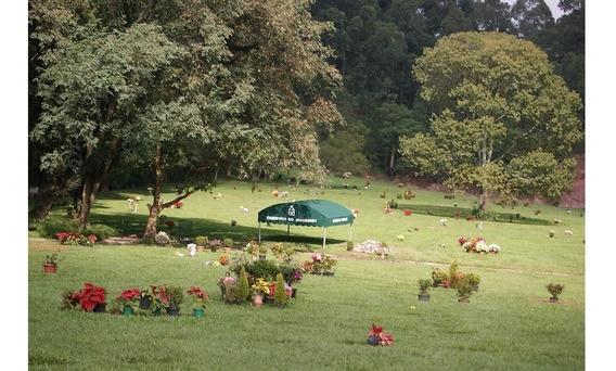 Jazigos No Cemiterio Do Morumbi