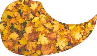Escudo Palheteira Resinada Violão Aço Sônica Autumn