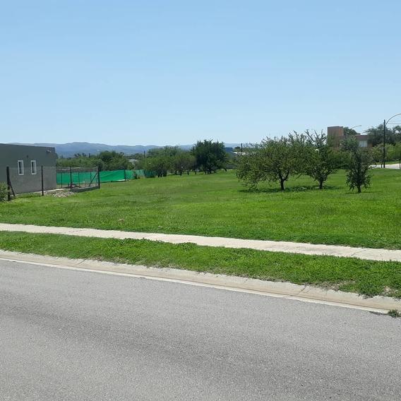 Vendo Terreno 509 Mts. (san Alfonso Del Talar).