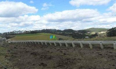Fazenda Pecuária - 300 Ha - Belo Vale (mg) - Codigo: Fa0260 - Fa0260