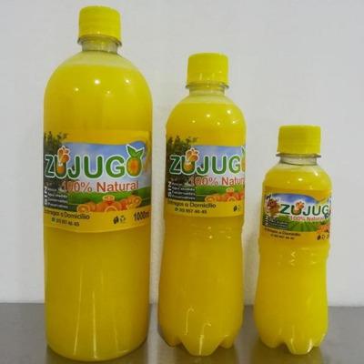 Planta De Jugo De Naranja 100% Natural