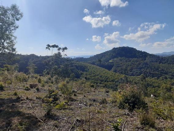 46b- Terreno Em Área Rural Com Ótima Topografia