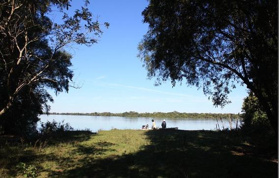 Se Venta Campo Ituzaingó Corrientes. Titulo. Isla.