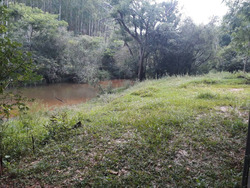 Sitio Com 15 Ha Em Baependi Sul De Minas , Com Muita Água . As Margens Do Rio Gamarra E Com Várias Nascentes. - 2884