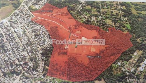 Imagem 1 de 1 de Terreno, 282456.18 M², São Tomé - 140246