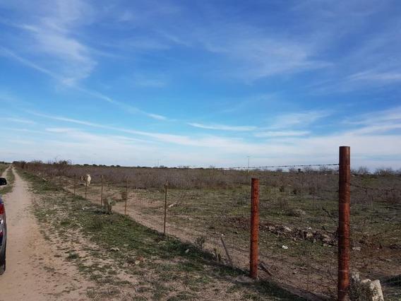 Terreno En Venta En Carretera A Guerrero
