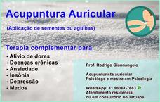 Acupuntura Auricular Em Domicílio Ou Consultório