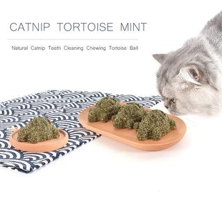 Catnip Ball Catnip Juguete Tortuga Menta Tortuga Natural