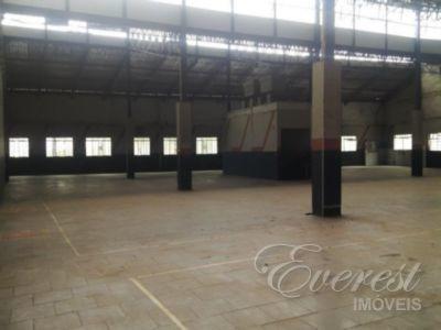 Imovel Comercial - Vila Carmosina - Ref: 162229 - V-162229