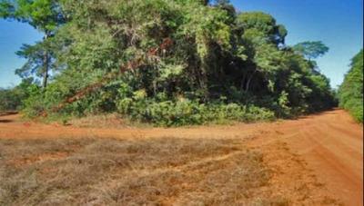 Venda - Fazenda - Zona Rural - Marcelândia - Mt - D4600