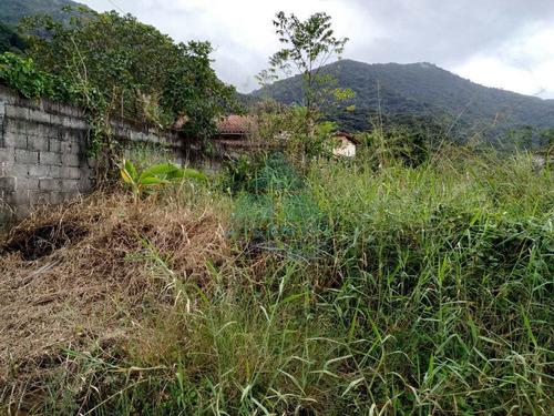 Terreno, Praia Da Lagoinha, Ubatuba - R$ 220 Mil, Cod: 1121 - V1121