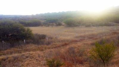 Amplio Terreno En Venta Carretera Salida San Luis Potosí Sur Pte Ags Ttv 247745