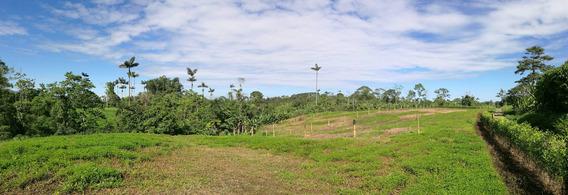 Venta De Terrenos En Santo Domingo De Los Tsachilas