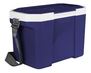 Caixa Termica 24 Azul Com Alça Alladin