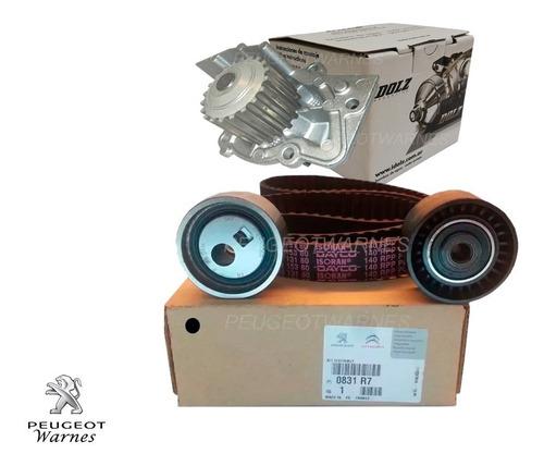 Distribucion Original + Bomba Dolz Citroen Berlingo 1.9 Dw8