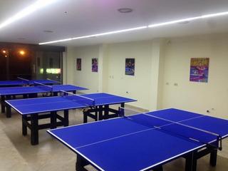 Mesa De Tenis Ping Pong Todo Incluido : Envio E Implementos