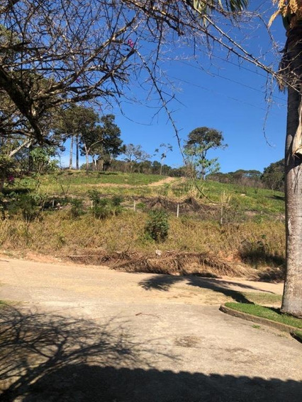 Terreno À Venda, 20000 M²- Guavirituba - Nazaré Paulista/sp - Te0642